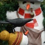 Top Tips for Christmas on a Budget