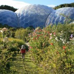 Eden Project Local Residents Pass