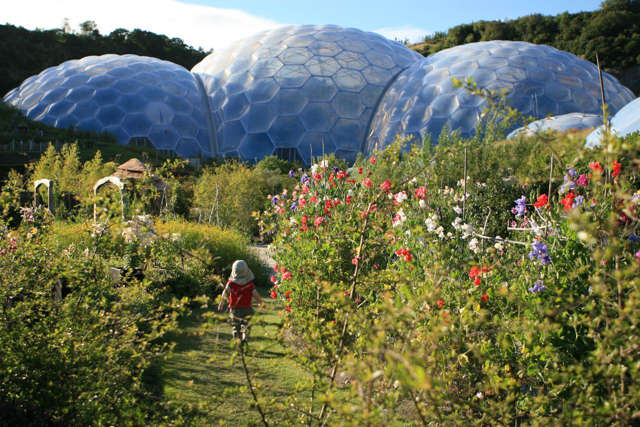 Info about the eden project book