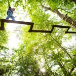 Go Ape Deals & Discounts for 2011