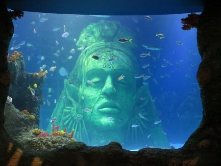 Sea Life Centres Related Keywords & Suggestions - Sea Life Centres ...