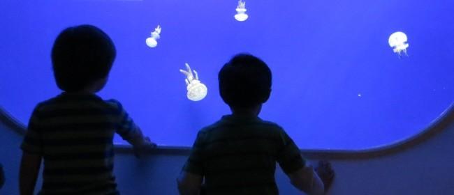 Horniman_aquarium