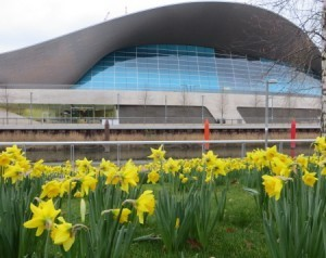 Queen elizabeth olympic park top tips cheap ticket deals - Queen elizabeth olympic park swimming pool ...
