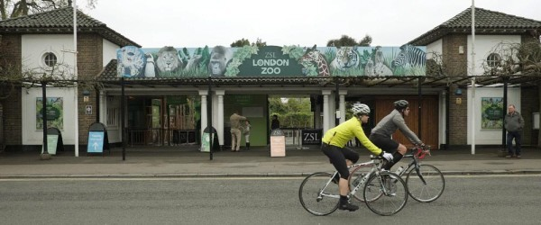 London Zoo entrance with cyclists