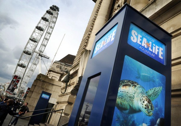 london eye & london sea life aquarium on the south bank
