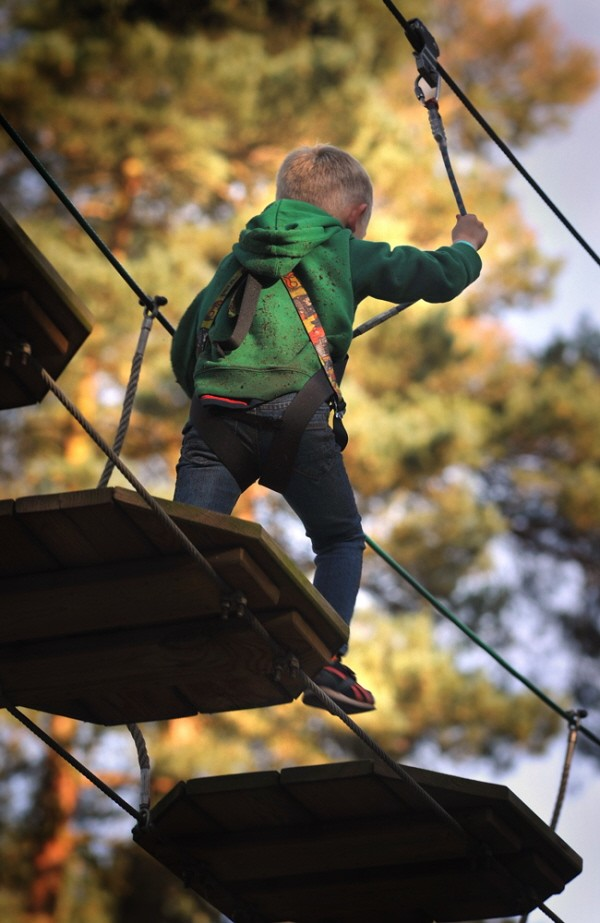 Junior tree top Go Ape course