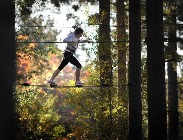 Go Ape aerial assault course