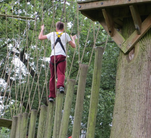 assault course in the trees at Aerial Extreme