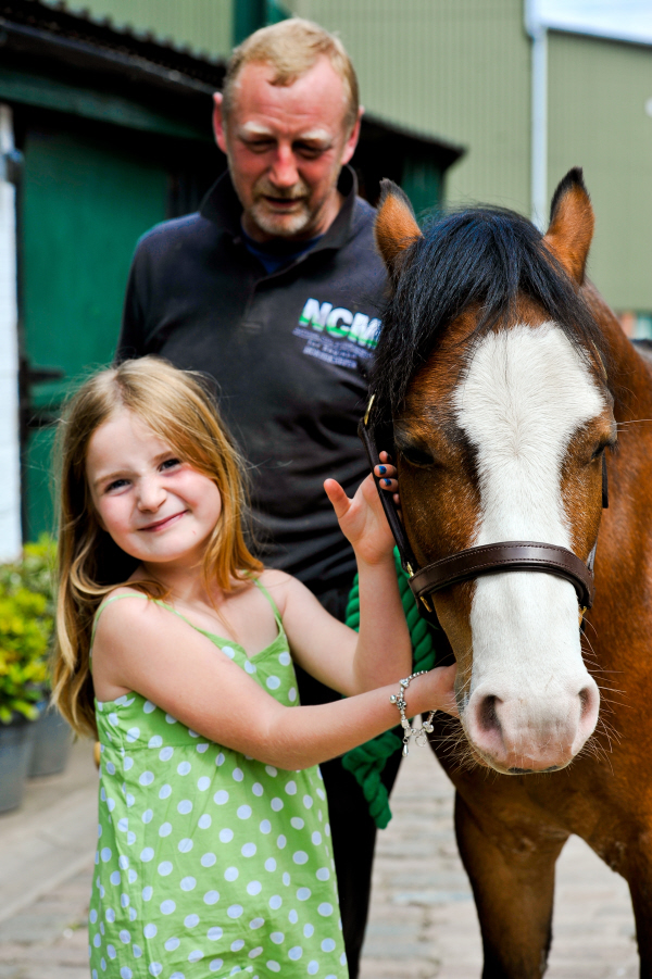 pit ponies at national coal mining museum